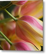 Light Of Spring Metal Print