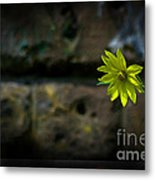 Light On The Dark Side Metal Print by The Stone Age