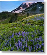 Light On The Mountain Metal Print