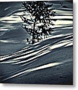 Light On The Snow Metal Print