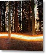 Light Trail Passing Around Trees Metal Print
