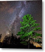 Light Up Your Life Metal Print