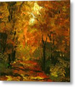 Lighted Trail Metal Print