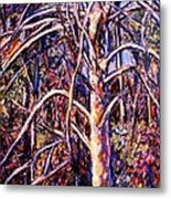 Lightening Struck Tree Metal Print