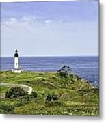 Lighthouse From Salal Hill Metal Print