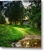Lighting The Pathway Home Metal Print by Paul Herrmann