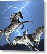 Lightning At Horse World Bw Color Print Metal Print