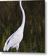 Like A Great Egret Monument Metal Print