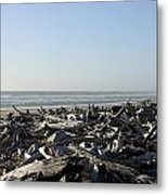 A Trees Boneyard Metal Print