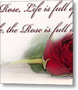 Like The Rose Metal Print by Mechala  Matthews
