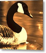 Lila Goose The Pond Queen Sepia Metal Print
