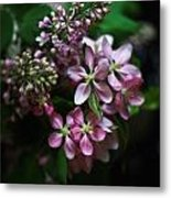 Lilac And Crabapple Metal Print