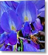 Lilac Blossom And Honey Bee Metal Print