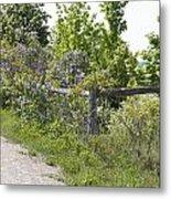 Lilac Fence I Metal Print