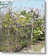 Lilac Fence II Metal Print