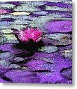 Lilac Lily Pond Metal Print
