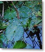 Lillies Of The Garden Metal Print