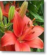 Lillys And Buds 1 Metal Print