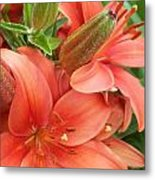 Lillys And Buds 3 Metal Print