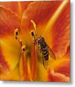 Lily And Bee Metal Print