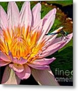 Lily And Dragon Fly Metal Print by Nick Zelinsky