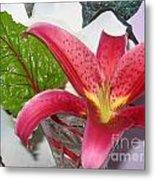Lily And Leaf Metal Print