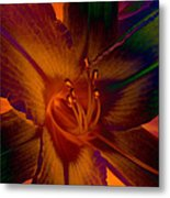 Lily Colors Metal Print