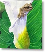 Lily Dipping Metal Print