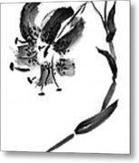 Lily In Black Metal Print