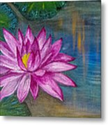 Lily In The Water Metal Print