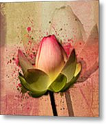Lily My Lovely - S03d4 Metal Print
