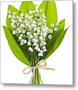 Lily-of-the-valley Bouquet Metal Print
