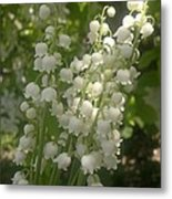 White Lily Of The Valley Bouquet Metal Print