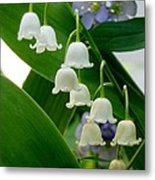 Lily Of The Valley Green Metal Print
