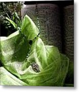Lily Of The Valley Rosary Metal Print