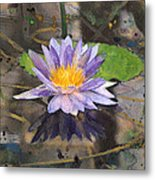 Lily Pad With Purple Flower Metal Print
