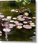 Lily Pads In The Fountain Metal Print