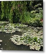 Lily Pads Monets Garden Metal Print