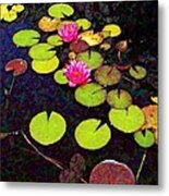 Lily Pads With Pink Flowers - Square Metal Print
