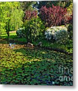 Lily Pond And Colorful Gardens Metal Print