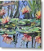 Lily Pond Reflections Metal Print
