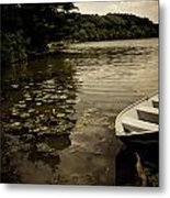 Lilypads In The Lake Metal Print