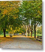 Lincoln Park In Fall Metal Print