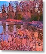 Linear Abstraction Of Pond Metal Print