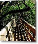 Lines Of Shade Metal Print by Will Boutin Photos
