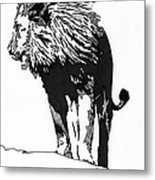 Lion 5x7 Card Metal Print