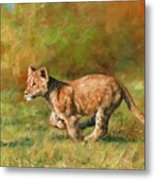 Lion Cub Running Metal Print