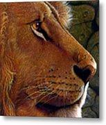 Lion King Metal Print by Jurek Zamoyski