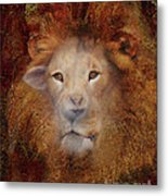 Lion Lamb Face Metal Print
