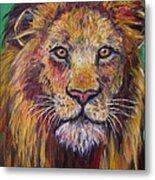 Lion Stare Metal Print